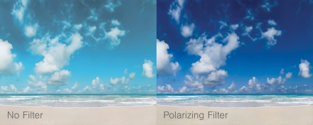ExpertNewsletter_2015-6_polarize_comparison